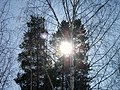 Lyovintsy, Kirovskaya oblast', Russia, 612079 - panoramio (100).jpg