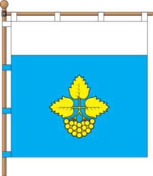 Lysianka - Image: Lysyanka prapor