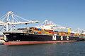 MSC Altair (ship, 2012) 001.jpg