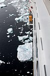 MS Veendam Sailing Through Icebergs in Antarctica - panoramio.jpg
