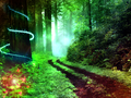 Magical Forest.png