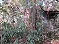 Magnolia Lane Plantation Outbuilding 1B.JPG