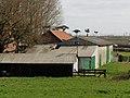 Maison aux avions de Steenwerck (4).jpg
