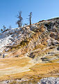 Mammoth Hot Springs 2 (8038942579).jpg