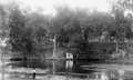 Man Fishing at Blue Springs WDL4039.png