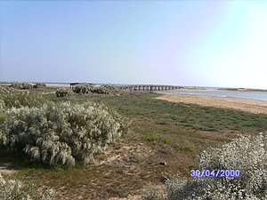 Marisma de Isla Cristina con puente de madera al fondo.jpg