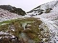 Marsh below Pin Well - geograph.org.uk - 1729696.jpg