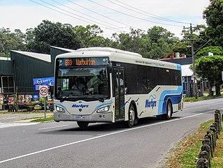 Martyrs Bus Service Bus operator in Melbourne, Australia