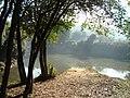Mata Atlantica Vila Americana- Meeting of Rivers Tatui and Sorocaba -SP - panoramio (7).jpg