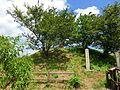 Matsugashima-castle01.jpg