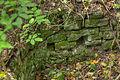 Mauerreste Burg Bilstein, Hessen, Deutschland IMG 1238 39 40 41 42 43 44 edit.jpg