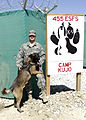 Military Working Dog training DVIDS210895.jpg