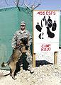 Military Working Dog training DVIDS210895.jpg