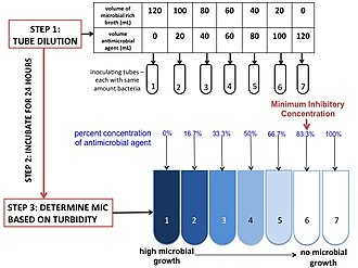Minimum inhibitory concentration - Image: Minimum Inhibitory Concentration