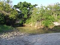 Mkomazi National Park-3.jpg