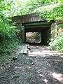 Mole Gap Trail - geograph.org.uk - 168109.jpg