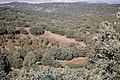 Montes - panoramio - José Ibáñez (2).jpg