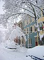 More Snow - Feb 6, 2010 - panoramio - Art Anderson.jpg