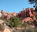 Mossy Cave Trail, Bryce Canyon, Ut 9-2009 (5884678975).jpg