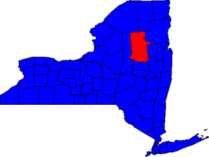 United States Senate election in New York, 2004 - Image: NY Sen 04Counties