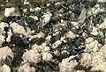 Nagyagite-Rhodochrosite-Quartz-206845.jpg