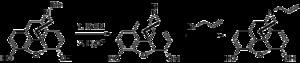 Nalorphine