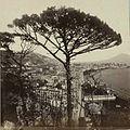Napoli veduta da Posillipo - cat. n° 1539.jpg