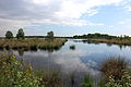 Nationaal Park Drents-Friese Wold. Locatie Fochteloërveen 010.JPG