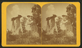 Natural monuments in Monument Park. Two sisters and two bachelors. (Nine miles from Colorado Springs.), by Gurnsey, B. H. (Byron H.), 1833-1880.png