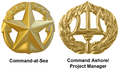 Navy Command Insignia.png