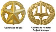 Navy Command Insignia