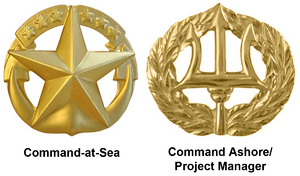 Command at Sea insignia - Command at Sea and Command Ashore/Project Manager insignia