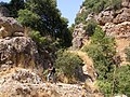 Near the waterfall of Nahal Satar along Nahal Amud - panoramio.jpg
