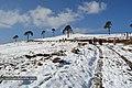 Neva en Ixchiguan San Marcos (8415805883).jpg