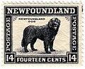 Newfoundlanddogstamp.jpg