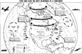 North American Air Defence Command radar map 1956.png