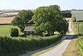 Northayes Farm, Whitsbury Down - geograph.org.uk - 203099.jpg