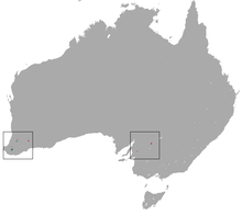 Numbat range(green — native, pink — reintroduced)