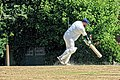 Nuthurst CC v. Henfield CC at Mannings Heath, West Sussex, England 057.jpg