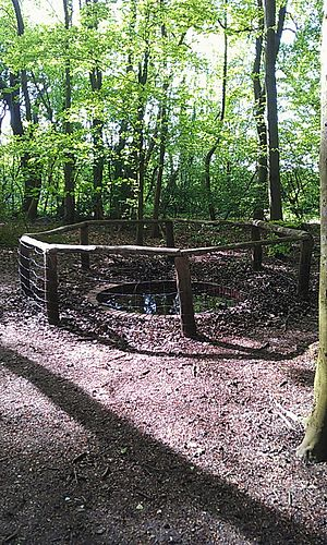 High Elms Country Park - The Old Pheasant Drinking Pond