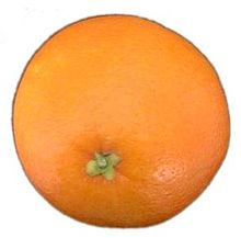 Orange-fruit-2.jpg