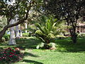 Orman garden - Cairo By Hatem Moushir 12.JPG