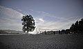 Osoyoos beachball - panoramio.jpg