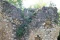 Ostaci srednjovekovne crkve (Ledinci) 6.7.2018 235.jpg