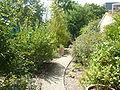 P1040066 jardin des senteurs.JPG