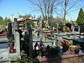 POL 2007 cmentarz ul renety 03.JPG