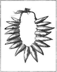 PSM V40 D056 Necklace of whale teeth.jpg
