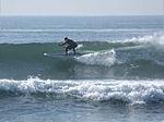 Paddle surfing 12 2008.jpg
