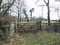 Paddock, at South Down - geograph.org.uk - 1185520.jpg