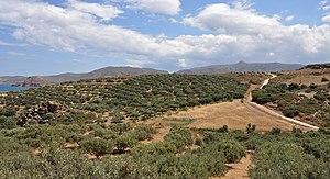 Landscape near Palekastro (Crete, Greece)
